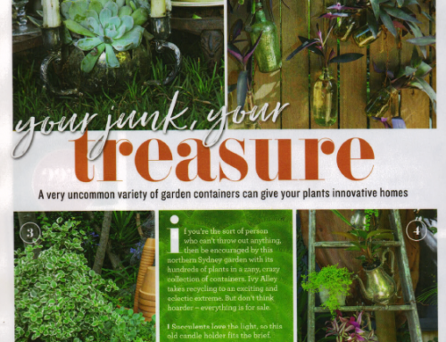 Your junk. Your treasure